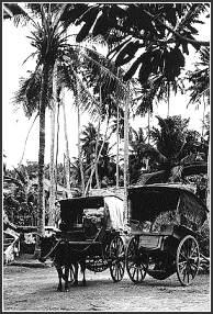 Rikscha Colombo